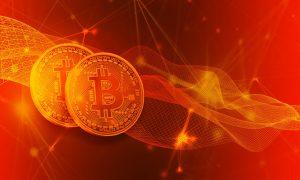 Bei Bitcoin Trader wird über den Betrug gesprochen